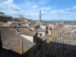 The Siena skyline with the Torre del Mangia