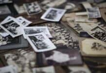 Ancestral Archives: Tips for Tracing Your Family Tree