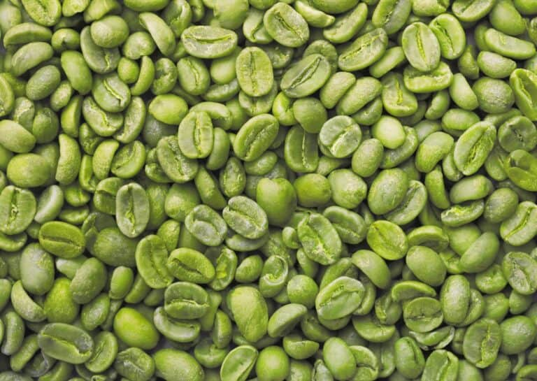 Why Green Coffee Is the New Black