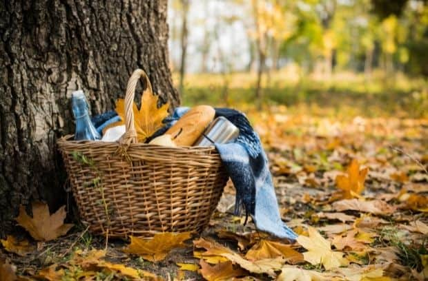 What You Should Pack for Your Fall Picnic